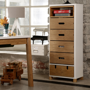 COW Cabinet with Boxes S6-041